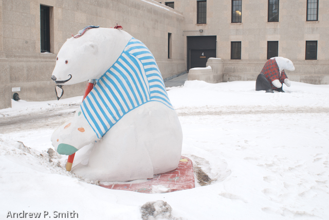 More Polar Bears on the streets of Winnipeg.